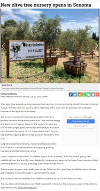 Article on Olives Unlimited by Sonoma Index-Tribune
